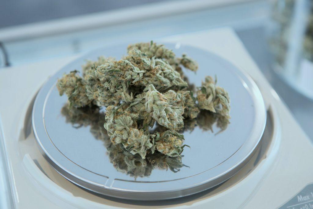 ak47 cannabis strain flowers