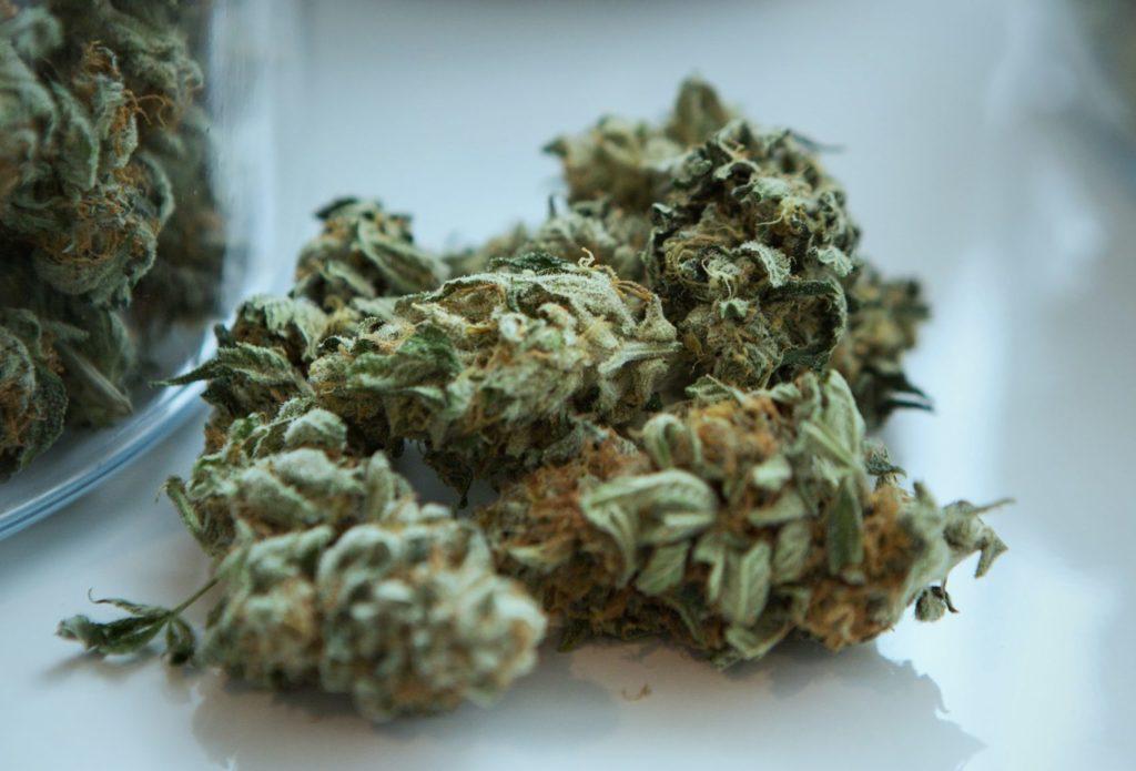 AK47 cannabis strain
