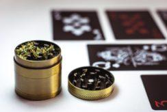 marijuana flowers